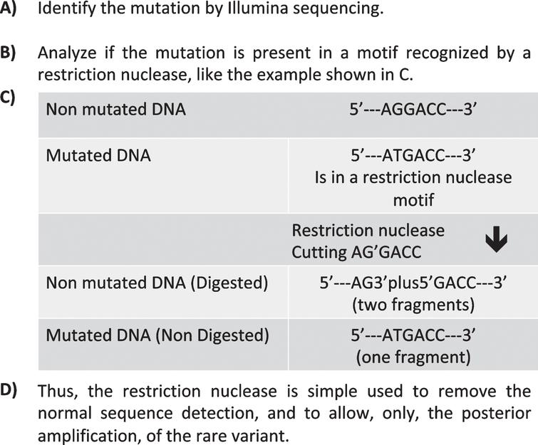 Human Brain Single Nucleotide Polymorphism: Validation of DNA