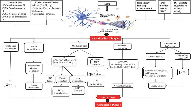 Neuroprotective Approach of Anti-Cancer Microtubule