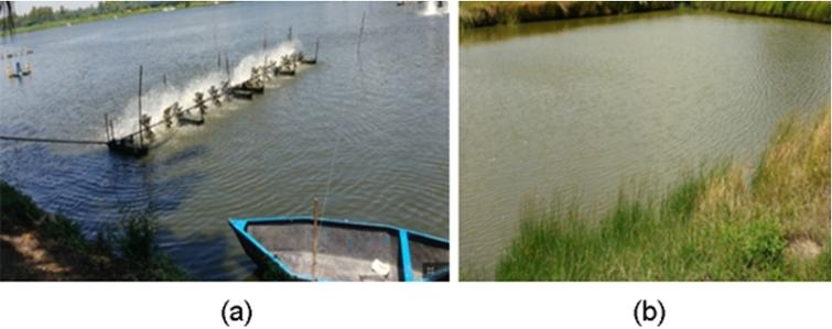 Wireless sensor network for aquaculture: Review, survey, and