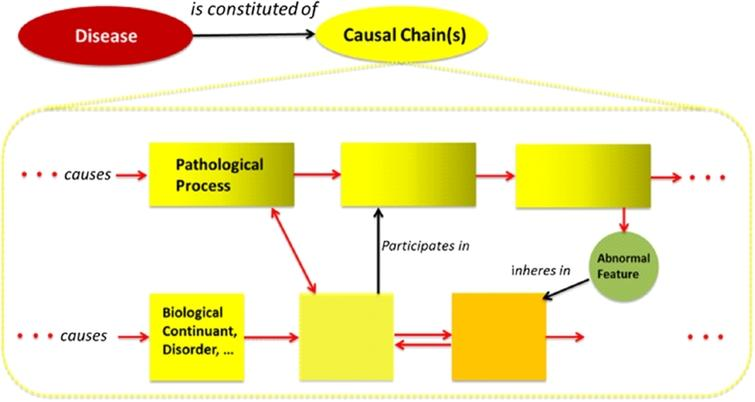 The causal structure of a generic disease causal chain. The dotted yellow lines from the Causal Chain node represent an expansion/zooming. Squares are causally-linked biological continuants. Rectangles are causally-linked processes. Red arrows signify one or more causal relations. Two opposing arrows indicate mutual causal interaction (not necessarily simultaneous, but perhaps causal feedback mechanisms). These represent different ways to model causal chains. Statements about continuants causing others may be defined in terms of their participation in causal processes, for instance. (The colors are visible in the online version of the article; http://dx.doi.org/10.3233/AO-150147.)