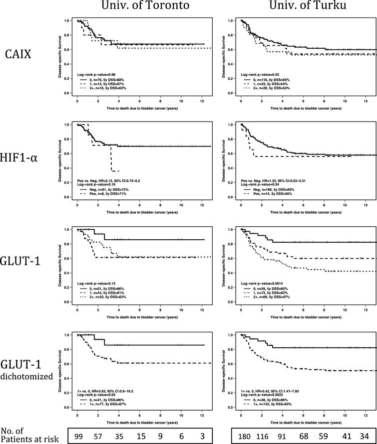 Univariate analyses of marker score association with disease-specific survival. For each hypoxia marker, Kaplan-Meier curves are presented for both study centers. For GLUT-1, in addition to detailed analysis on all intensity levels, also analysis for dichotomized (negative vs. any positive immunosignal) intensity scores are presented. P-values refer to log-rank test.