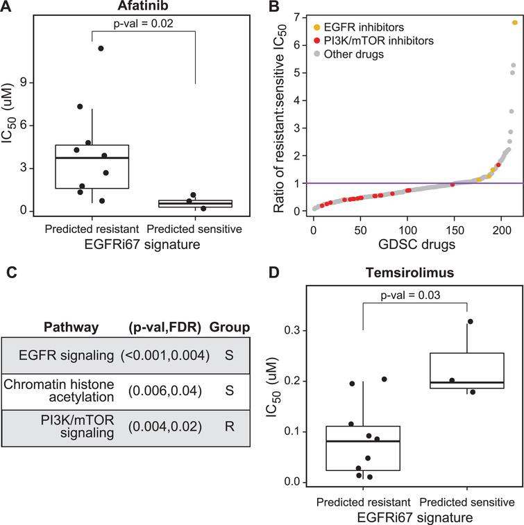 A Gene Expression Signature Predicts Bladder Cancer Cell Line