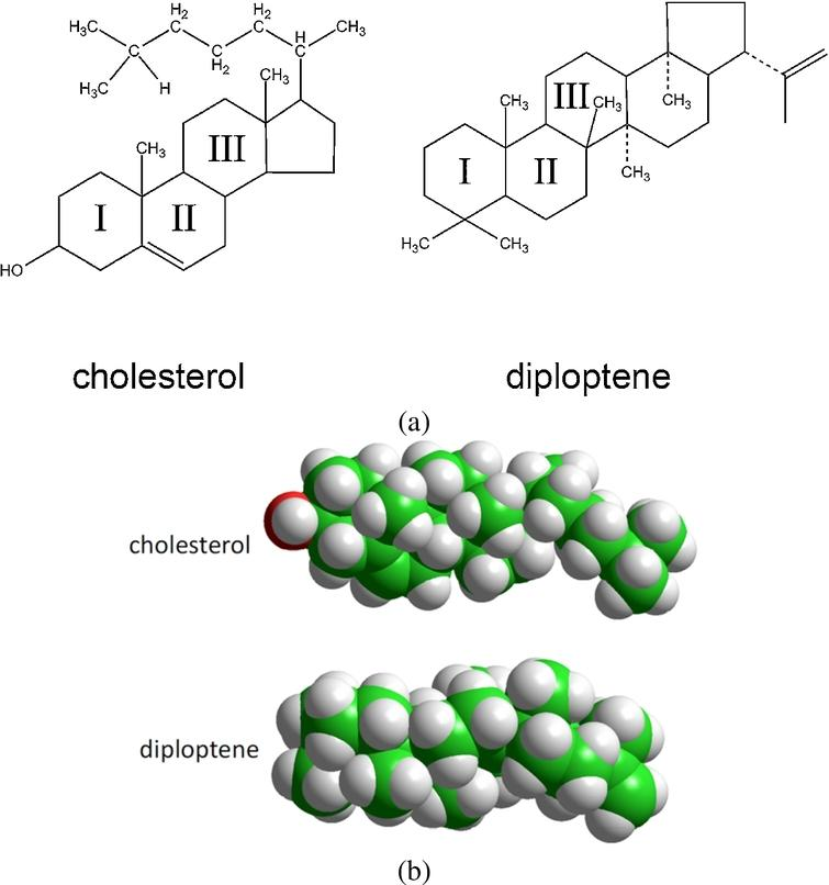Composition of cholesterol