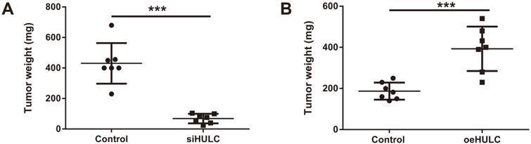 [Full text] Long Non-Coding RNA HULC Promotes Cervical