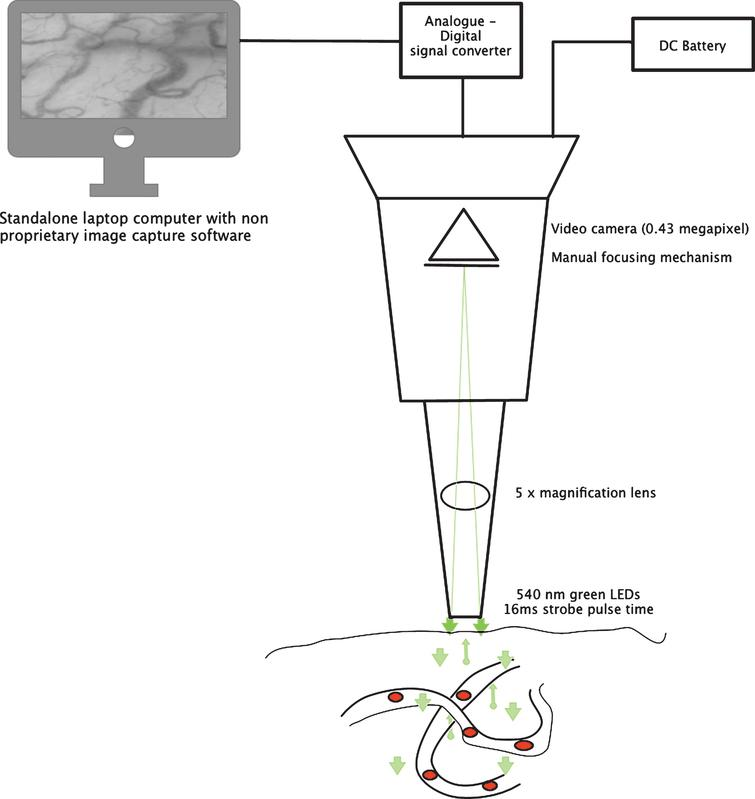 The Cytocam video microscope. A new method for visualising