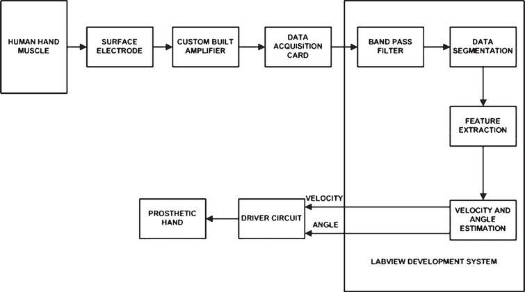 comparative study on estimation of elbow kinematics based. Black Bedroom Furniture Sets. Home Design Ideas