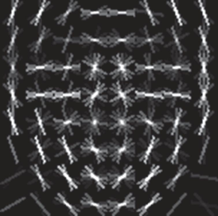 Hybrid feature descriptors to detect face spoof attacks - IOS Press