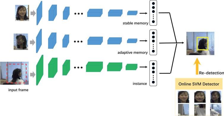 Robust online visual tracking via stable and adaptive