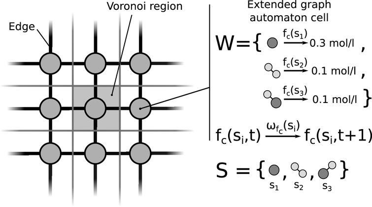 Simulation of diffusion using a modular cell dynamic simulation