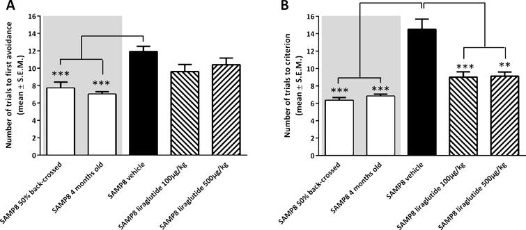 Memory acquisition and retention function in SAMP8 mice assessed in an active avoidance T-maze test. Memory acquisition (A) and retention (B) performance in vehicle-dosed or liraglutide-treated 10-month-old SAMP8 mice. Vehicle-dosed 50% backcrossed SAMP8 mice and untreated 4-month-old SAMP8 control mice, respectively, served as controls for normal memory function. Long-term liraglutide treatment restored memory retention in 10-month-old SAMP8 mice, as compared to age-matched vehicle-dosed SAMP8 control mice. The number of trials to make one active avoidance was a measure of acquisition. Retention was tested one week later by continuing training until the mice achieved the criterion of making five active avoidances in six consecutive trials. The number of trials needed to reach this criterion was the measure of memory retention. **p< 0.01, ***p< 0.001 (one-way ANOVA, Dunnet's post-hoc test).