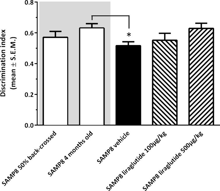 Recognition memory function in SAMP8 mice assessed in a novel object recognition (NOR) test. NOR performance in 10-month-old vehicle-dosed or liraglutide-treated SAMP8 mice. Vehicle-dosed 50% backcrossed SAMP8 mice and untreated 4-month-old SAMP8 control mice, respectively, served as controls for normal memory function. Vehicle-dosed 10-month-old SAMP8 mice showed poor object recognition memory performance, as compared to untreated 4-month-old SAMP8 mice. Liraglutide-treated 10-month-old SAMP8 mice did not show significant improvement of memory performance in the NOR test. The discrimination index was defined as the amount of time exploring the familiar object or the novel object over the total time spent exploring both objects multiplied by 100. *p< 0.05 (one-way ANOVA, Dunnet's post-hoc test).