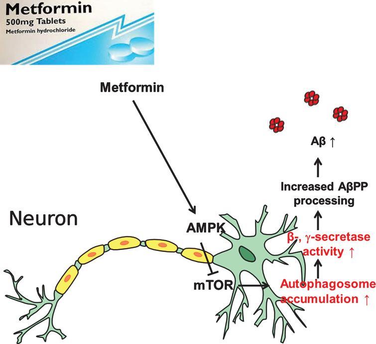 amitriptyline 10mg insomnia