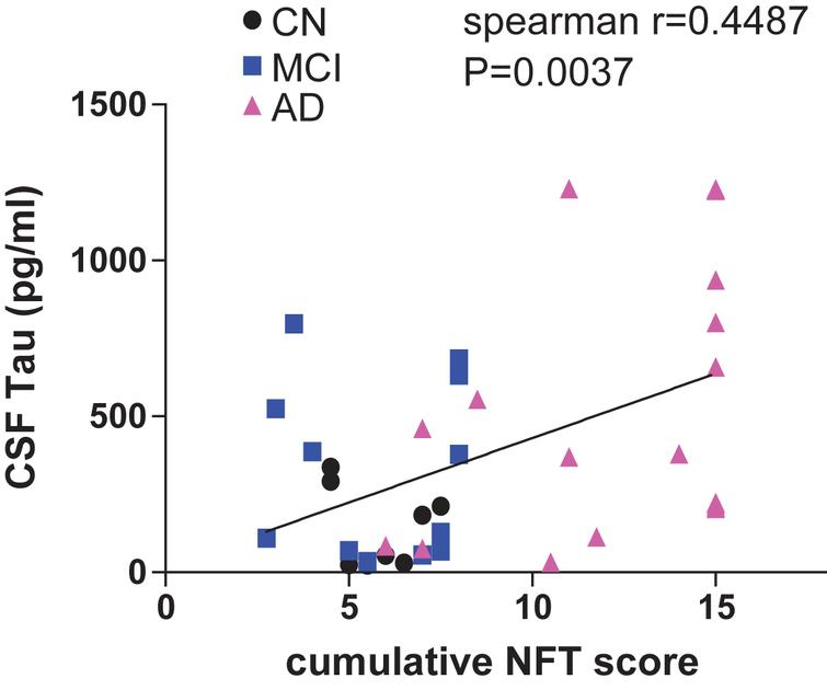 A Theoretical Analysis of the Synergy of Amyloid and Tau