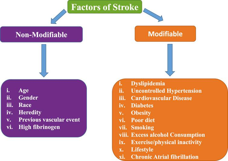Approach To A Patient With Stroke Epic Win together with 466474473892989994 furthermore ATH045 besides Pathophysiology in addition Intracranial Hemorrhage. on hemorrhagic stroke