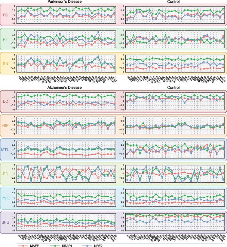 Meta-Analysis Of Parkinson's Disease And Alzheimer's