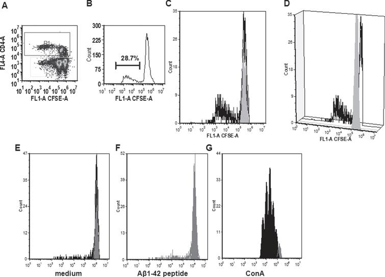 Analyses of the CD4 proliferation in rabbits 833D (A to D) and 831D (E to G). A) A characteristic dot histogram for the analysis of proliferating cells is shown. Gates were set around the CD4+T cells (R1). B) Histogram and marker show the percentage of proliferating cells. C, D) These cells were further analyzed using the FCS express proliferation software. E-G) The same analyses for CD4+T cells of a different rabbit in medium (E), Aβ42 peptide containing medium (F), and after ConA stimulation (G).