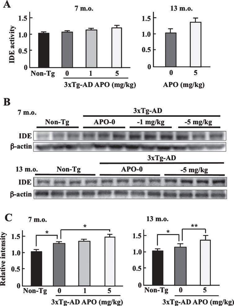 Apomorphine Therapy for Neuronal Insulin Resistance in a