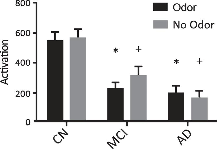 Activation in the primary olfactory cortex (POC, mean±standard error) during odor and no odor conditions. The activation in the POC in mild cognitive impaired (MCI) and Alzheimer's disease (AD) subjects was decreased by more than 50 percent than that of the cognitively normal controls (CN) during odor presentation. The no odor conditions showed a decrease in activation in a more stepwise fashion. *p≤0.05, ANOVA when compared to CN- Odors. +p < 0.05, ANOVA when compared to CN- No Odor.