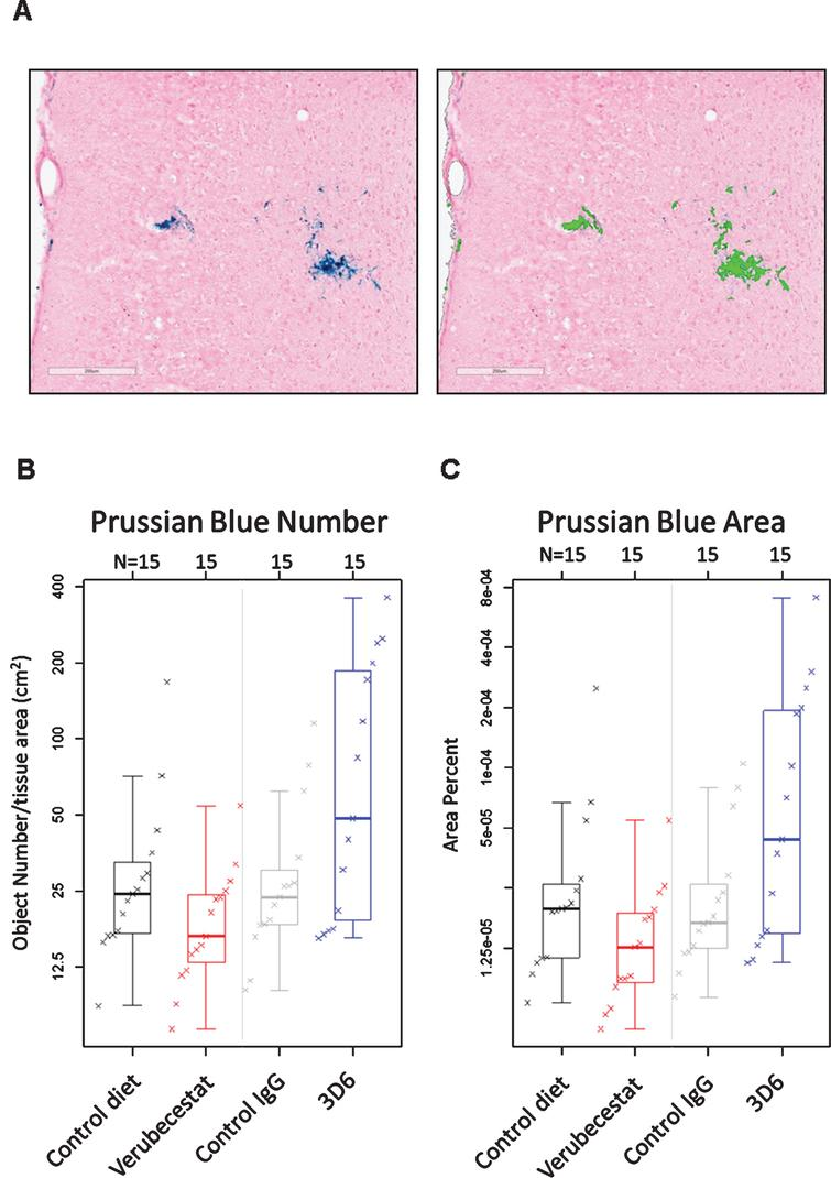Prussian blue detected microhemorrhage following 12 weeks of treatment. A) Example of Prussian blue positive MH (left) and the corresponding image analysis mask (right) that defines positive pixels. B) Summary of Prussian blue positive object number across treatment groups. C) Summary of fractional Prussian blue object area across treatment groups. B and C show a boxplot for the indicated group with a line drawn at the median and the individual values overlaid. Sample sizes are given on the top axis.