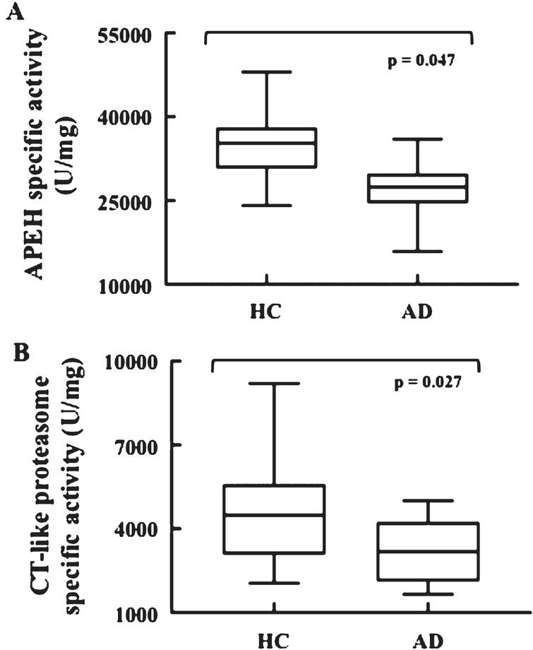 Low Erythrocyte Levels of Proteasome and Acyl-Peptide Hydrolase