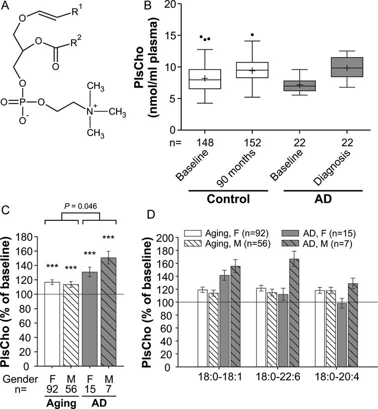 Alterations In The Plasma Levels Of Specific Choline Phospholipids