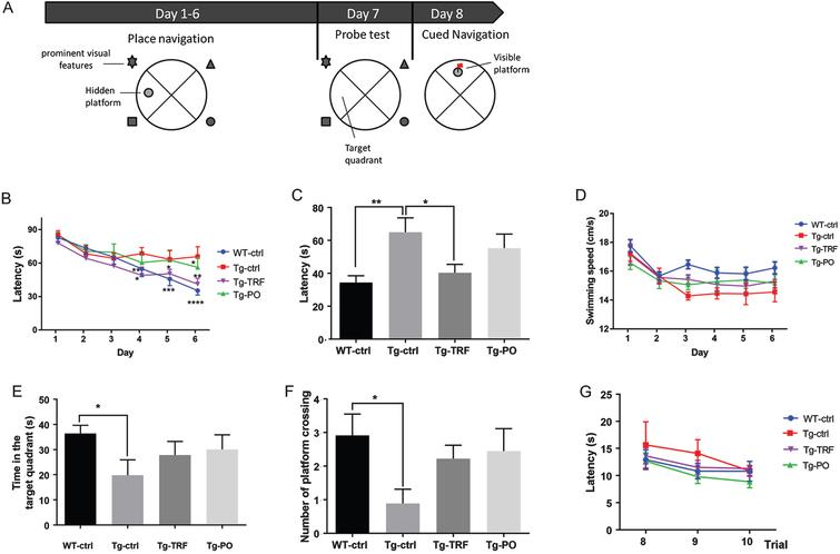 Tocotrienol-Rich Fraction of Palm Oil Improves Behavioral