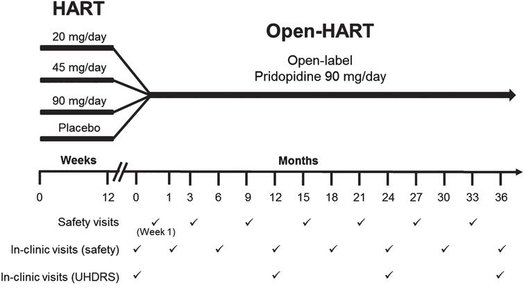 Safety and Exploratory Efficacy at 36 Months in Open-HART