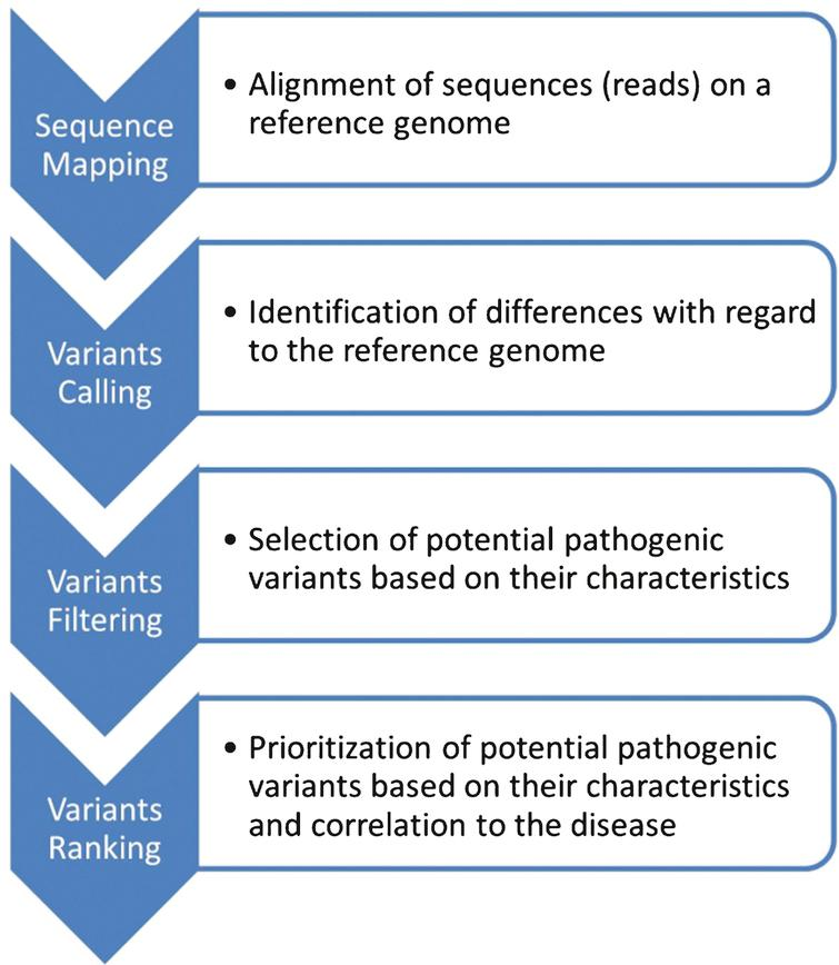 Diagnostic use of Massively Parallel Sequencing in