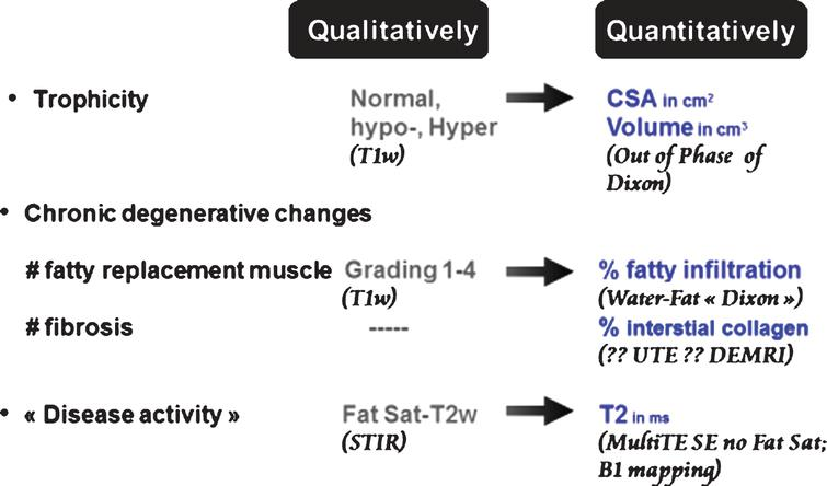 Skeletal muscle tissue characterization by NMR imaging. Comparison of qualitative and quantitative approaches. CSA: cross-sectional area; UTE: ultra-short echo time; DEMRI: delayed enhancement MRI; Fat Sat: fat saturation.
