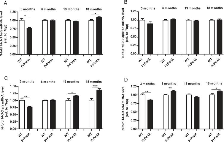 Age-Related Changes of 14-3-3 Isoforms in Midbrain of A53T