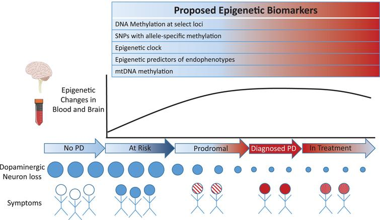 Proposed epigenetic-based biomarkers involving sites exhibiting concordant and epigenetic changes in blood and brain of PD patients.