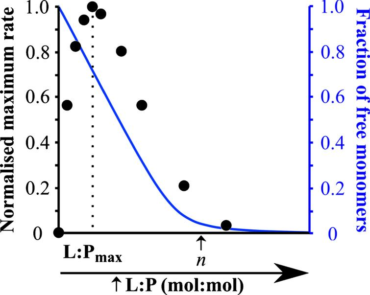 Influence of the L:P ratio on the kinetics of α-synuclein aggregation. This plot shows (i) the rate of α-synuclein aggregation (black) and (ii) the fraction of soluble protein (blue) in the presence of different DMPS: α-synuclein ratios. Figure adapted from [28].