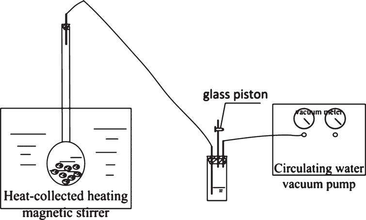 Effect of negative pressure on the dissolution behavior