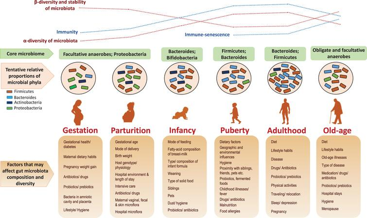 Gut microbiome and aging: Physiological and mechanistic