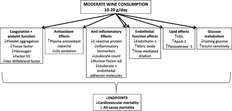 The relationships between alcohol, wine and cardiovascular