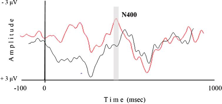 A N400 ERP Study in letter recognition after passive tactile