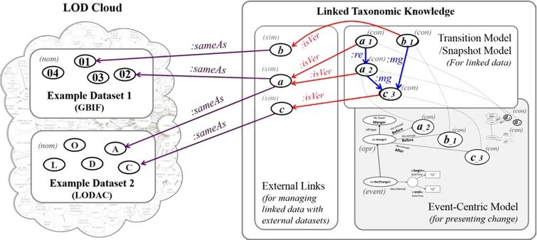 Role of LTK (right) in LOD Cloud (left) containing example datasets. Ovals with single alphabet or ID number are general concepts, ovals with version are versions of general concepts, dashed lines show same URIs, :same is owl:sameAs, :isVer is dct:isVersionOf, :re is ltk:replacedInto, and :mg is ltk:mergedInto.