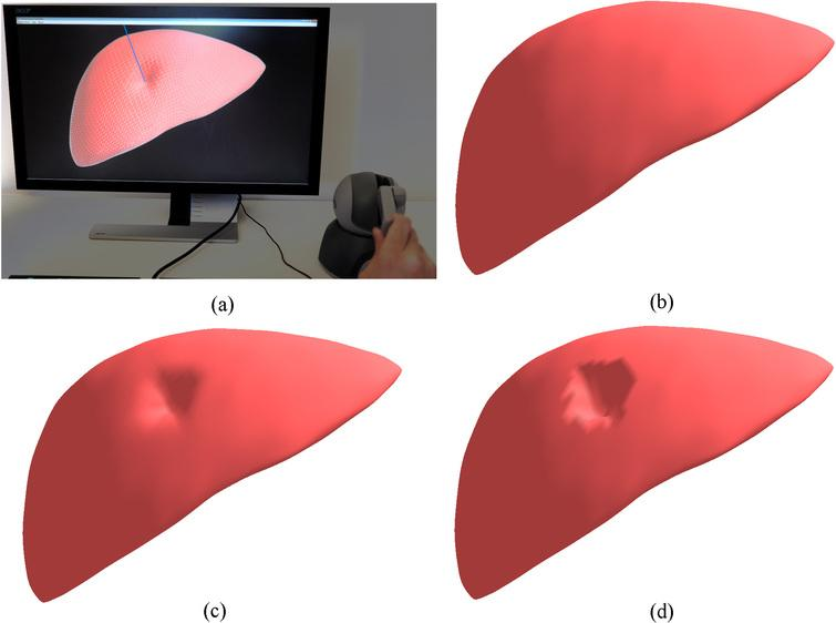 Interactive deformation of the human liver model: (a) the interactive simulation system; (b) the initial state of the volumetric liver model; (c) the deformation by the proposed CNN; (d) the deformation by the traditional ChainMail.