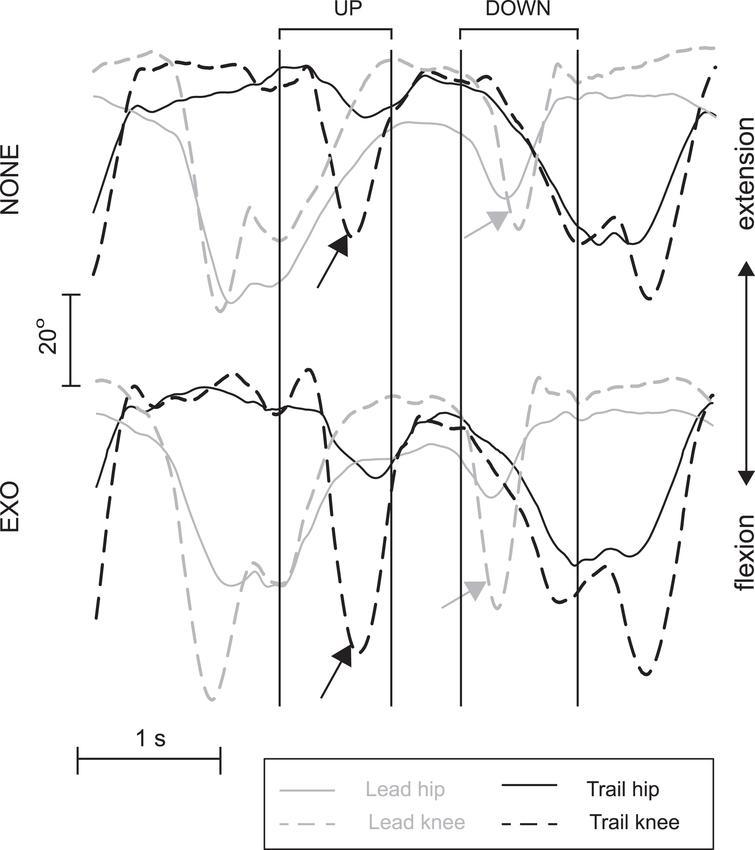 Effects of exoskeleton use on movement kinematics during