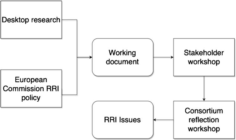 Summary of the RRI process.