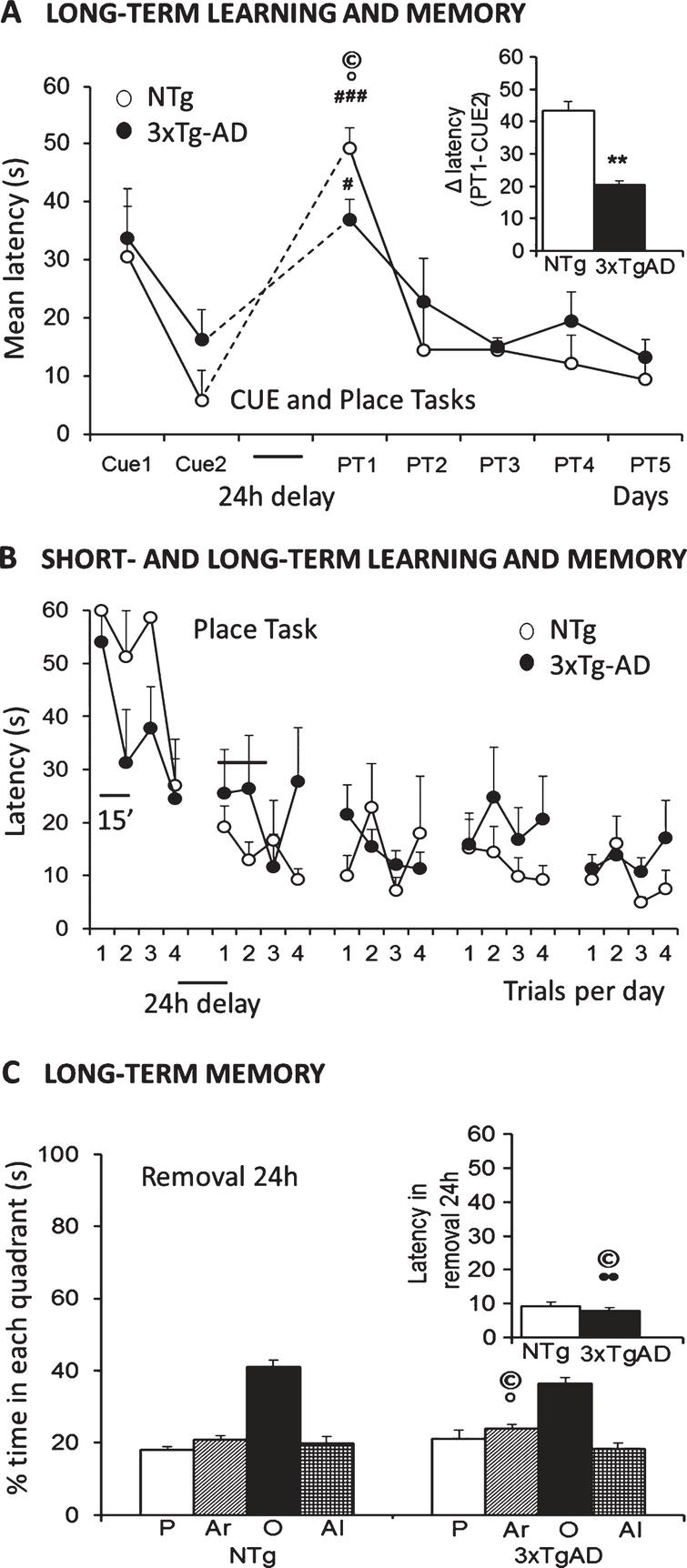 Salient learning and memory deficits in three paradigms of the Morris water maze in 18-month-old female 3xTg-AD mice surviving to advanced stages of disease as compared to age-matched NTg counterparts. A) The cue and place tasks showed similar acquisition curves over days, but genotype differences could be found when the platform was hidden and located in a reversed position. The new task was more difficult for animals remembering the prior location, so it took them more time to find the new position. B) Detailed analysis of short- and long-term memory assessed in the place tasks evidenced that cognitive impairment was the salient trait for distinguishing the genotypes. C) Memory, assessed in the Removal, showed lack of preference for the trained quadrant in both groups pf mice, with a slightly worse performance in the 3xTg-AD mice. Student's t-test, *p < 0.05, **p < 0.01 versus NTg mice. Paired t-test # p < 0.05, # # # p < 0.001 PT1 versus Cue2. (©) Pearson's correlations between behavioral variables and lifespan: •positive, °negative, p < 0.01.