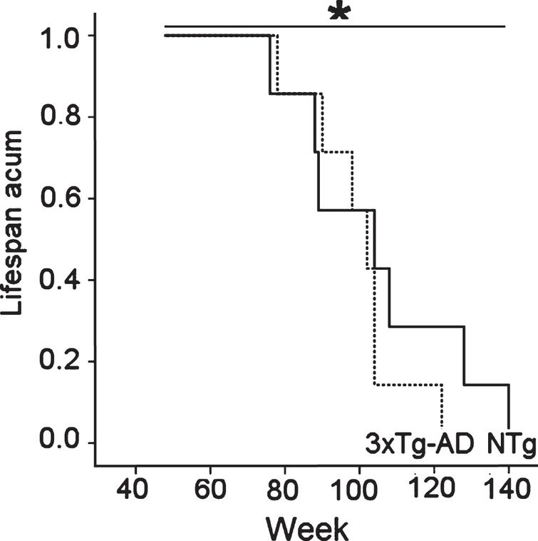 Difference in the survival curves of 18-month-old female 3xTg-AD mice and age-matched NTg counterparts was found in spite of similar mean life expectancies. Kaplan-Meyer test, * p < 0.05.