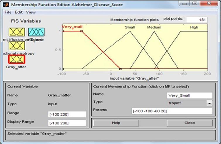 Membership function for gray matter.