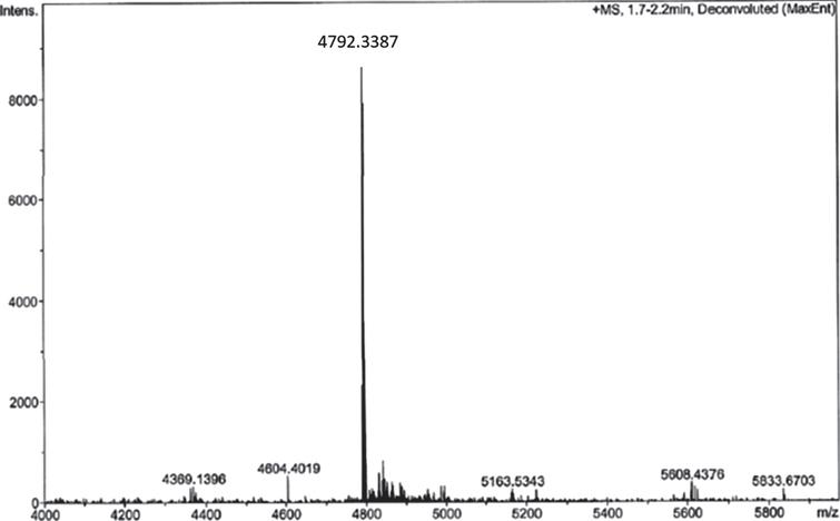 Analysis of RI-peptide-DBCO reaction by ESI-MS analysis of reaction mixture after 1 h.