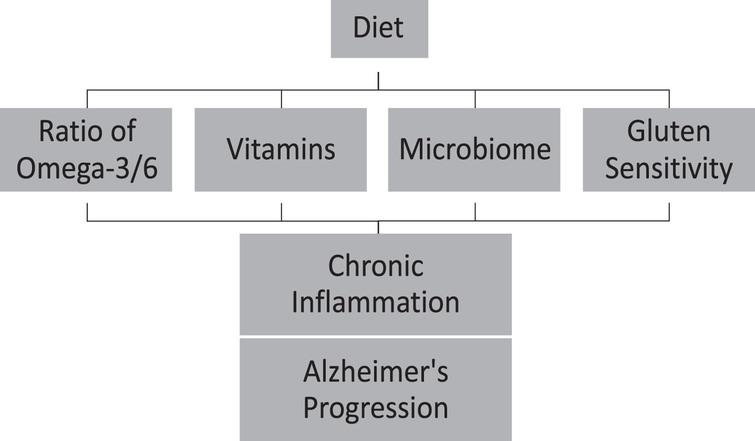 Diet can accelerate Alzheimer's disease progression throughout chronic inflammation.