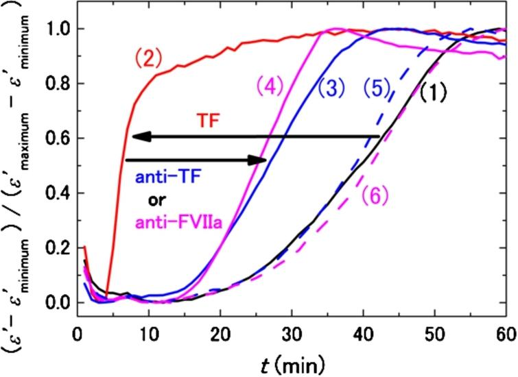 DBCM responses from a healthy subject at 10 MHz normalized by the minimum and maximum values of permittivity. The black curve (1) shows the control sample without TF and antibodies, and the red curve (2) demonstrates the acceleration of the DBCM response by addition of TF to the sample blood. Simultaneous addition of TF and anti-TF antibody (3) or TF and anti-FVIIa antibody (4) prolongs the DBCM response in comparison with (2). On the other hand, addition of anti-TF antibody (5) or anti-FVIIa antibody (6) without TF shows responses similar to the control (1).