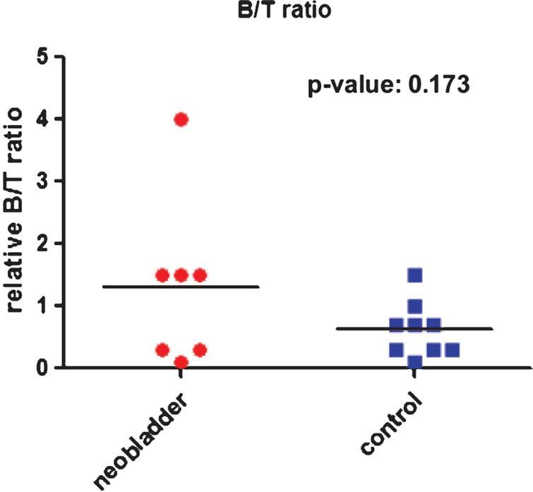 Comparison of B/T cell ratio in urethral biopsies of neobladder and control patients.
