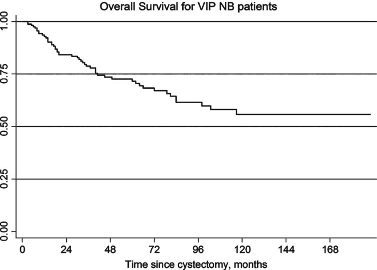 Overall survival for VIP neobladder patients.