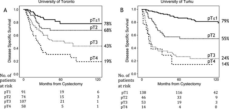 Kaplan-Meier analysis for disease specific survival for the University of Toronto (A) and the University of Turku (B).