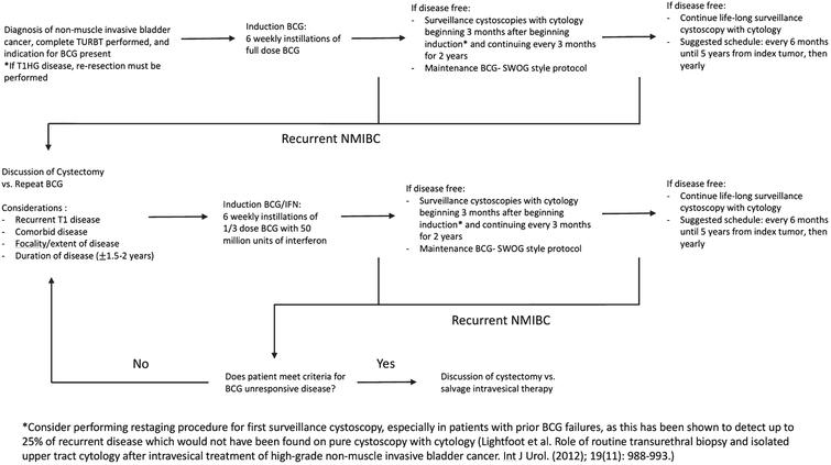 Proposed treatment algorithm for patients with non-muscle invasive bladder cancer.